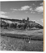 Legend Of The Bear Wyoming Devils Tower Panorama Bw Wood Print