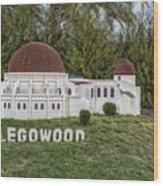 Legowood Wood Print