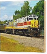 Lehigh Valley/ Lackawanna Engines Wood Print