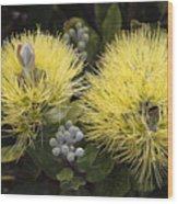 Lehua Mamo Blossom Wood Print