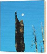 Lei Wang 07 Wood Print