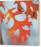 Leif Superhighway Wood Print