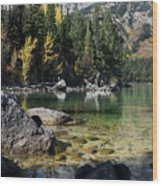 Leigh Lake Cove Wood Print