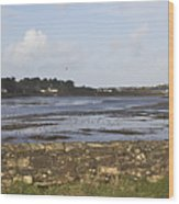 Lelant Water Hayle Estuary Wood Print