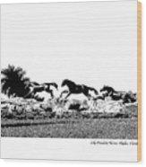 Lely Horses Wood Print