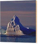 Lemaire Channel Antarctica 31 Wood Print