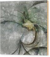 Lemniscatic Fancy  Id 16098-021154-72820 Wood Print