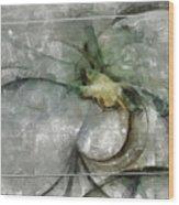 Lemniscatic Fancy  Id 16098-021154-72823 Wood Print