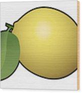 Lemon Fruit Outlined Wood Print