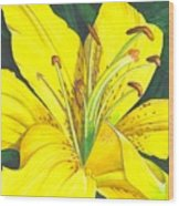 Lemon Lily Wood Print