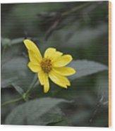 Lemon Queen Wood Print
