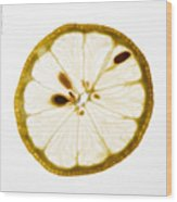 Lemon Slice Wood Print