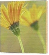 Lemon Symphony Echoes Wood Print