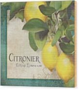 Lemon Tree - Citronier Citrus Limonum Wood Print
