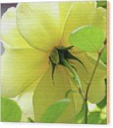 Lemon Yellow Rose Wood Print
