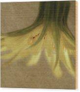 Lempa Wood Print
