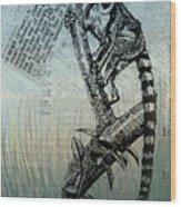Lemur Catta Wood Print