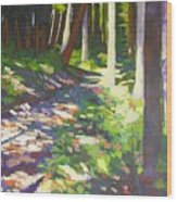 Lena Lake Trail I Wood Print