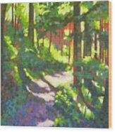 Lena Lake Trail II Wood Print