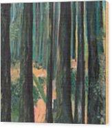 Lena Lake Trail Wood Print