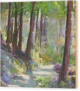 Lena Lake Trail Shadows Wood Print