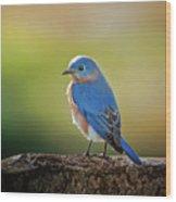 Lenore's Bluebird Wood Print