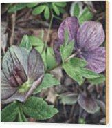 Lenton Rose Wood Print