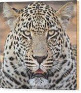 Leopard Close Up Wood Print