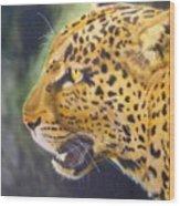 Leopard Wood Print by Crispin  Delgado