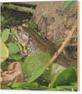 Leopard Frog Wood Print