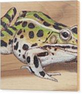 Leopard Frog No 1 Wood Print