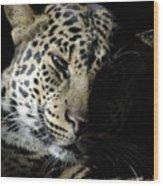 Leopard II Wood Print