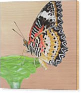 Leopard Lacewing Butterfly #2 V2 Wood Print