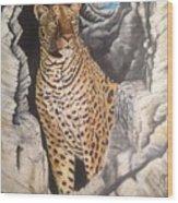 Leopard On The Rocks Wood Print