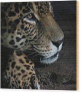 Leopard Print Wood Print