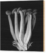 Les Pleureuses En Deuil (b&w) Wood Print by Photograph by Magda Indigo