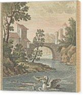 Les Poissons Et Le Cormoran (the Fish And Thecormorant) Wood Print