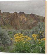 Leslie Gulch Sunflowers Wood Print