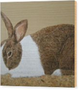 Les's Rabbit Wood Print