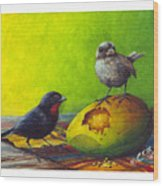 Lesser Antillean Bullfinches And Mango Wood Print