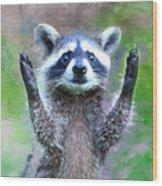 Let Me In I'm Rocky Raccoon Wood Print