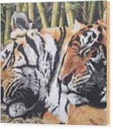 Let Sleeping Tigers Lie Wood Print