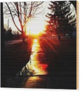 Let The Sun Light Your Path Wood Print