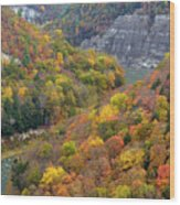 Letchworth Falls Sp Fall Colored Gorge Wood Print