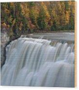 Letchworth Falls Sp Middle Falls Wood Print