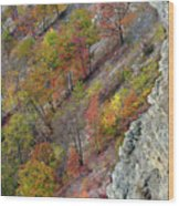Letchworth Falls State Park Fall Colors Wood Print