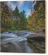 Letchworth's Wolf Creek  Wood Print