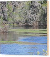 Lettuce Lake With Bridge Wood Print