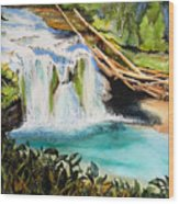 Lewis River Falls Wood Print