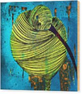 Lib-580 Wood Print